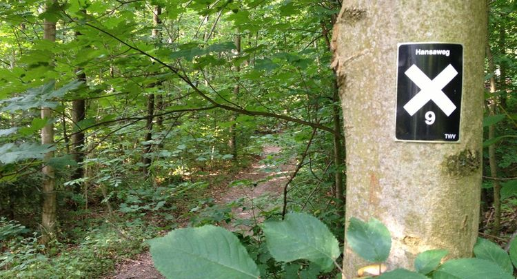 4 Landschaft Hansaweg