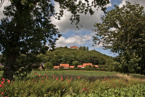 Blick auf die Burg Schaumburg